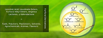 Levulinic Acid and other  ...